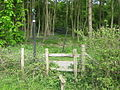 Stile on Lane near Sweets Wood. - geograph.org.uk - 1291036.jpg