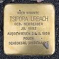 Stolperstein Karl-Marx-Allee 45 (Mitte) Tsipora Urbach.jpg