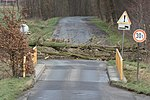 Sturmtief Friederike - Gescher Brücke (1).jpg