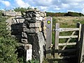 Substantial stile - geograph.org.uk - 991865.jpg