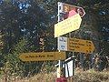 Swiss Hiking Network - Guidepost - Petite Joux.jpg