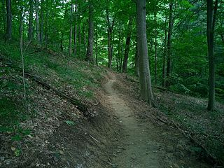 Hoosier National Forest property managed by the United States Forest Service in the hills of southern Indiana