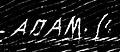 Sygnatura Adama.jpg