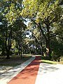 Szigeterdő park, rekortán futópálya és térköves járda, 2018 Dombóvár.jpg