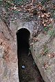 Túnel d'una séquia al costat del riu Palància, Sogorb.JPG