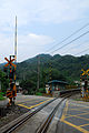 TRA FuGuei Station Crossing.jpg