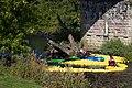 Tadcaster Duck Race - 9989449363.jpg