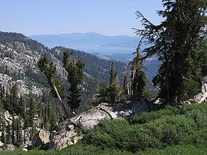 Tahoe Rim Trail - Image: Tahoe Rim Trail SL