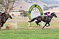 Tambo vallery races 2006 05.jpg
