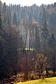 Techelsberg Pavor Muehlbach 09112011 014.jpg