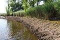Technisch-biologische Ufersicherung an der Wümme, Versuchsstrecke 2 (50678789192).jpg