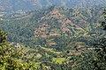 Terrace Farming in Nepal in Rakathum VDC-0365.jpg