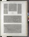Thèbes. Karnak. Scènes guerrieres sculptées sur la face nord du palais (NYPL b14212718-1268063).tiff