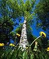 The Dandelion perspective.jpg