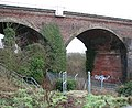 The Harford Rail Viaduct - graffiti in one of the arches - geograph.org.uk - 1671203.jpg