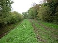 The Howden 20 walk goes down this Green Lane (geograph 2112261).jpg