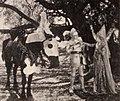 The Love Charm (1921) - 3.jpg