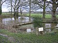 The Pond, Rushall Manor Farm - geograph.org.uk - 358457.jpg