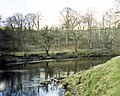 The River Nith in the grounds of Friars Carse Hotel - geograph.org.uk - 374688.jpg