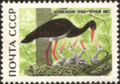 The Soviet Union 1969 CPA 3794 stamp (Black Stork).png