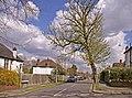 The Spinney, London N21 - geograph.org.uk - 758230.jpg