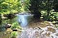 The stream at Longnor - geograph.org.uk - 13945.jpg