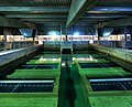 Toronto Islands Water Filtration Plant.jpg