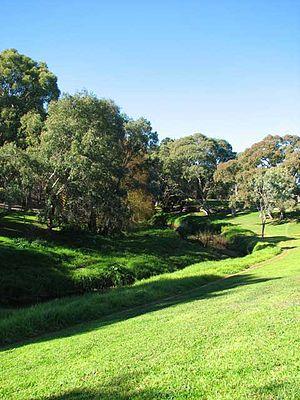 Torrens Linear Park - Linear Park near Paradise Interchange