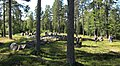 Torsa stenar (Raä-nr Almesåkra 45-1) treudd 0740.jpg