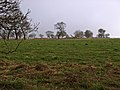 Towards Howe Hill - geograph.org.uk - 688137.jpg