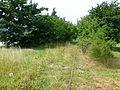 Tracks of Amagerbanen 16.JPG