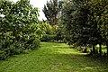 Tree plantation in Nuthurst village, West Sussex, England 01.jpg