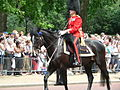 Trooping the Colour 2006 - P1110237 (169171452).jpg