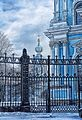 Tsentralny District, St Petersburg, Russia - panoramio (239).jpg