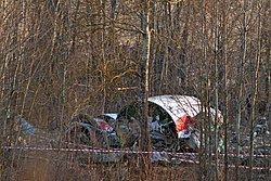 Tu-154-crash-in-smolensk-20100410-11.jpg