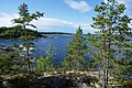Tullviksbäckens naturreservat6.jpg