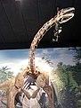 Turiasaurus.jpg