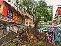 Typhoon Mangkhut, nature disaster, Tai Po, Hong Kong (49902762653).jpg