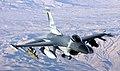 USAF F-16FightingFalcon.jpg