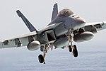 USS Ronald Reagan Activities DVIDS186013.jpg