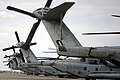 US Navy 041118-M-6237R-014 CH-53E Super Stallion helicopters are parked on the flight line as Marines and Sailors of the 31st Marine Expeditionary Unit (MEU), prepare to commence with Iraqi border fort inspections.jpg