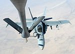 US Navy F-18E Super Hornets supporting operations against ISIL 141004-F-FT438-112.jpg