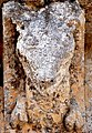 Vérac église St Cybard Modillons 30.JPG