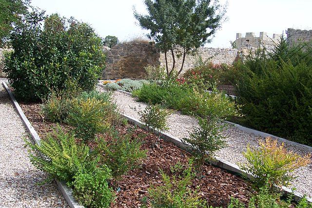 File valladolid monasterio de matallana jardin plantas for Plantas aromaticas jardin