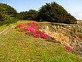 Van Damme, State Park - 3543252269.jpg