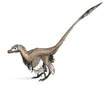 Dinosaurios Con Plumas Wikipedia La Enciclopedia Libre Dinosaurios, todo acerca de los dinosaurios: dinosaurios con plumas wikipedia la