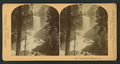 Vernal Falls, 630 feet. Cal, by Littleton View Co. 7.png