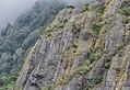 Via ferrata in Westland Tai Poutini National Park.jpg