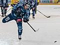 Vienna Capitals vs Fehervar AV19 -37.jpg