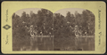 View in Prospect Park, from Robert N. Dennis collection of stereoscopic views 5.png